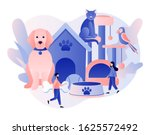 pets care services. pet shop....   Shutterstock .eps vector #1625572492