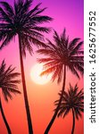 natural coconut trees mountains ... | Shutterstock .eps vector #1625677552