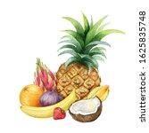 watercolor hand painted set of... | Shutterstock . vector #1625835748