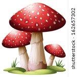 illustration of a red mushroom... | Shutterstock .eps vector #162657302