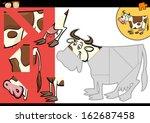 cartoon vector illustration of... | Shutterstock .eps vector #162687458