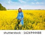 a beautiful pregnant girl walks ...   Shutterstock . vector #1626944488