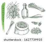 set of isolated sketches of... | Shutterstock .eps vector #1627739935