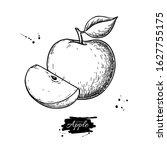 apple vector drawing. hand... | Shutterstock .eps vector #1627755175