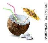 half a coconut with milk ... | Shutterstock .eps vector #1627798438