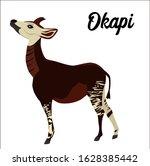 Okapi Vector Illustration On...