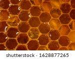 honey close up. amber sweet... | Shutterstock . vector #1628877265
