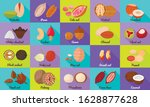 nut icons set. flat set of nut... | Shutterstock .eps vector #1628877628