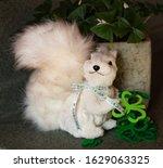 Small photo of Saint Patrick's Day still life featuring a white polystyrene squirrel, green felt shamrocks and hearts, a live blooming shamrock plant, and Irish ribbon.