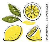 lemon  whole  half  slice and...   Shutterstock .eps vector #1629063685