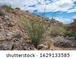 Usa  Nevada  Clark County  Las...