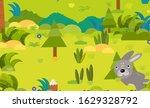 cartoon forest scene with wild... | Shutterstock . vector #1629328792