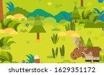 cartoon forest scene with wild... | Shutterstock . vector #1629351172