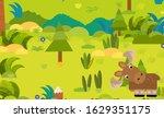 cartoon forest scene with wild... | Shutterstock . vector #1629351175