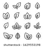 linear set of black leaves... | Shutterstock .eps vector #1629553198