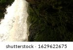 water falls and fauna down... | Shutterstock . vector #1629622675