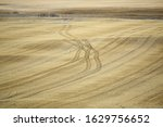 The golden stubble left in the farmer