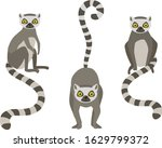 vector illustration of walking... | Shutterstock .eps vector #1629799372