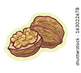 hand drawn walnut cartoon... | Shutterstock .eps vector #163022678