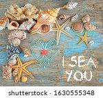 I Sea You. Seashells And Heart...