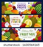 fruits and berries vector... | Shutterstock .eps vector #1630564165