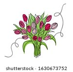 Tulips Bouquet  Bloom  Vector...