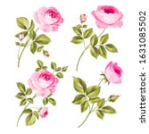 rose bud collection. elements...   Shutterstock .eps vector #1631085502