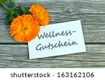wellness voucher with marigold... | Shutterstock . vector #163162106