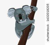 cute koala on a tree ... | Shutterstock .eps vector #1632018205