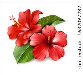 red hibiscus flower. vector... | Shutterstock .eps vector #1632097282