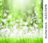 green summer meadow with sun... | Shutterstock . vector #163215698