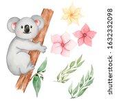 Watercolor Koala Animal Clipart....