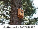 Bat Box In Tree   Wildlife...