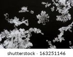 snowflakes on a black background | Shutterstock . vector #163251146