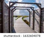 Boardwalk Path On Manmade...