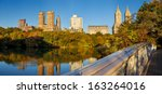 horizontal panoramic of central ... | Shutterstock . vector #163264016