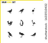 fauna icons set with golden...