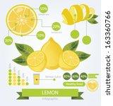 Lemon. infographics. fruits vector illustration.