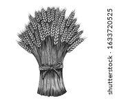illustration of sheaf of a... | Shutterstock .eps vector #1633720525