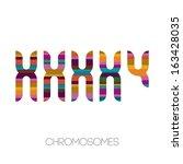 chromosomes  vector illustration | Shutterstock .eps vector #163428035