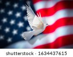 American Flag With Dove Of...