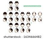 information chart of hair loss...   Shutterstock .eps vector #1634666482