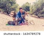 Professional Dog Walker Or Pet...