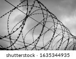 Barbed Wire On A Concrete Fence ...