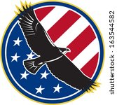 illustration of a bald eagle... | Shutterstock .eps vector #163544582