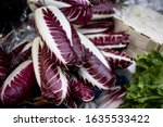 Small photo of Radicchio rosso di Treviso, commonly known as Treviso has elongated, variegated red leaves that taste more delicate and less bitter than the more familiar ball-shaped Radicchio rosso di Chioggia
