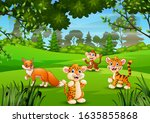 wild animal playing in the... | Shutterstock . vector #1635855868