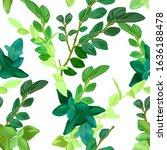 hand drawn fresh spring... | Shutterstock .eps vector #1636188478