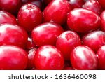 close up of fresh ripe red... | Shutterstock . vector #1636460098