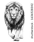 Lion. Sketchy  Graphical  Black ...